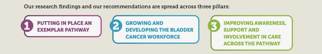Our research findings and our recommendations are spread across three pillars:  1 putting in place an exemplar pathway. 2 growing and developing the bladder cancer workforce. 3 improving awareness support and involvement in care